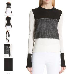 Rag & Bone NWT  Marissa Color Block Sweater   LRG